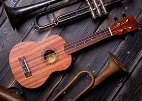 Чехол для укулеле своими руками